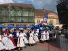 9_mai_2018_Timisoara (19)