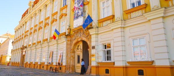 Lansarea Centrului de Informare Europe Direct Timişoara la Sala Baroc a Muzeului de Artă