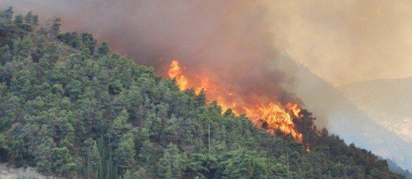 UE acorda sprijin Greciei in lupta contra incendiilor | Activarea Mecanismului UE de Protectie Civila