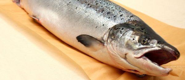 După 8 ani, UE reia importurile de produse ecologice din Norvegia și Islanda