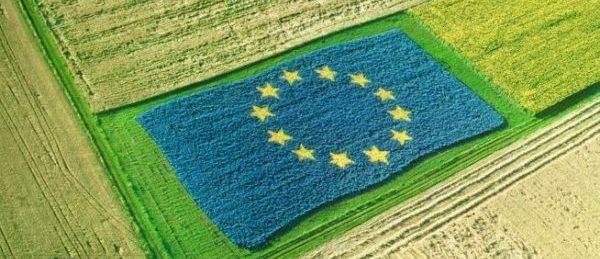 Consultare publică: ce măsuri trebuie luate pentru ca lanțul de aprovizionare cu alimente din UE să devină mai echitabil?